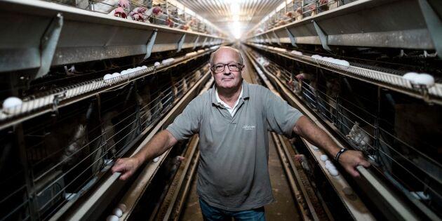Äggproducenter fortsatt kritiska