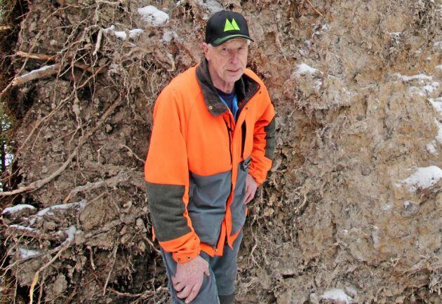 Göte Österman är medveten om riskerna med stormarbetet, men kommer ändå att ta hand om enstaka träd på egen hand. Skogsägareförenigen avverkar på de områden där det finns större volymer.