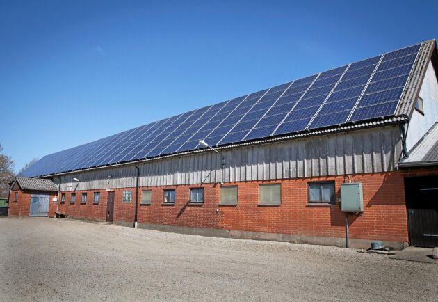 Stalltakets solcellsanläggning är på 47 kilowatt.