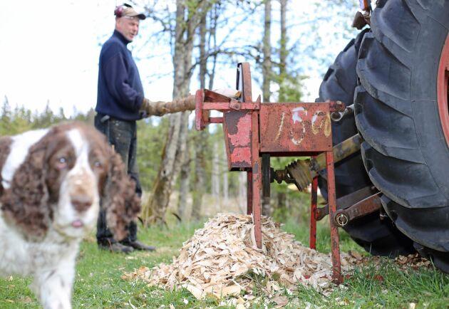 Gunnar Eriksson vässar stolpar med begränsad assistans av sin hund Ingo.