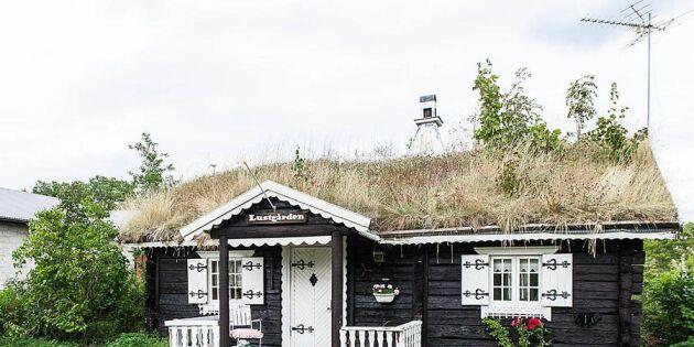 Guldläge! Förverkliga dina lantliga drömmar – 7 sommarhus under miljonen