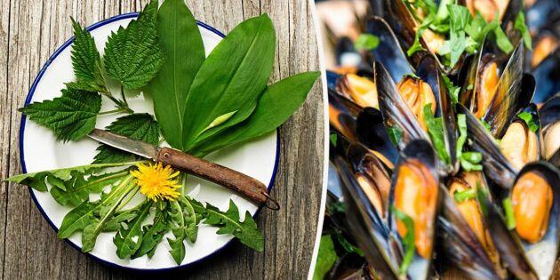 Mat i säsong: 13 svenska råvaror du ska äta i april