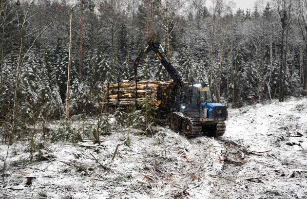Skogsstyrelsen planerar upphöra med registreringen av nyckelbiotoper i samband med att skogsägares gör sina avverkningsanmälningar,
