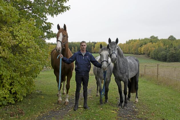 Stall Fredrik Lind förmedlar cirka 200 hästar och ponnyer årligen. De största kunderna är ridskolor från mellersta och norra Sverige.