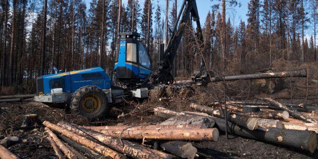 Skogsmaskin orsakade skogsbrand utanför Kristdala