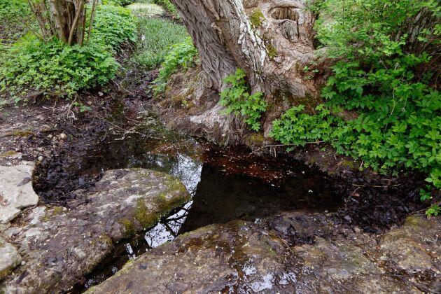 Det krävs en större satsning på att kartlägga grundvattnet, menar Lundaprofessorn.