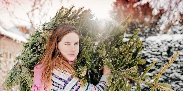 Därför ska julen städas ut den 13 januari
