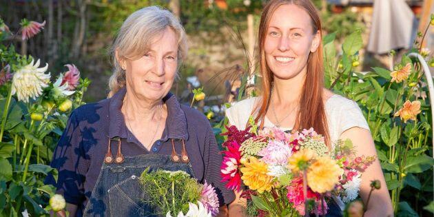Cecilia och Lovisa har skapat sitt drömliv – som blomsterbönder i Småland