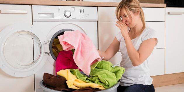 Forskaren: Din tvättmaskin kan vara en bakteriehärd!