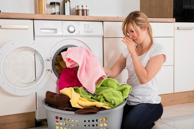 Luktar den nytvättade handduken illa? Det kan bero på bakterier i tvättmaskinen.