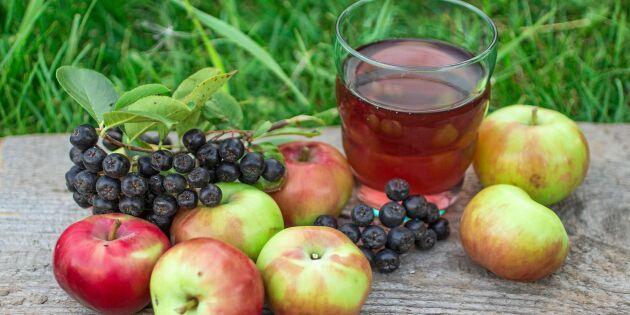 6 trädgårdsfynd att dryga ut äppelmusten med