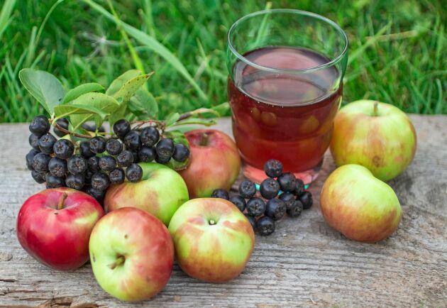 Äpple och aronia i ljuv förening.