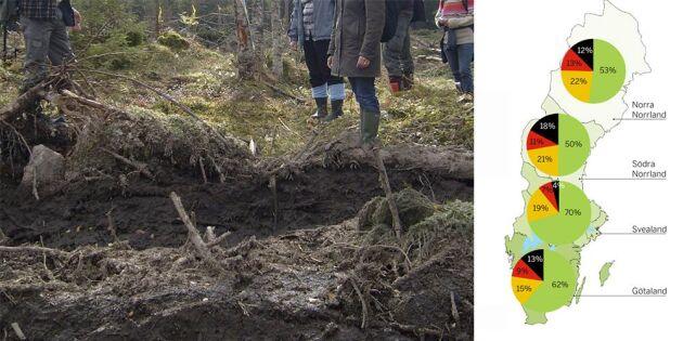 Fler fornlämningar körs sönder i skogen