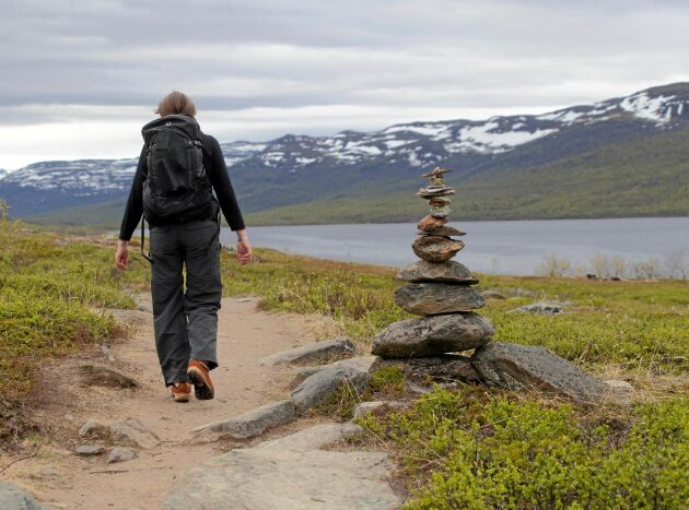 Dag Hammarskjöldsleden som går mellan Abisko och Nikkaluokta följer delvis Kungsleden.