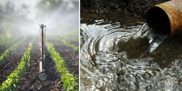 Jordbrukets vattenföroreningar värre än industrins