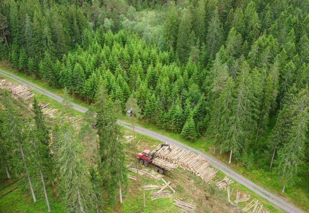 Många skogsentreprenörer har tvingats stå still på grund av sommarens torka. Nu har Södra beslutat att betala ekonomisk kompensation till sina avtalsentreprenörer.