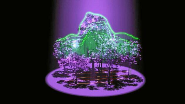 Projektet GEDI, Global Ecosystem Dynamics Investigation kommer att avslöja skogens tredimensionella arkitektur, ungefär som i den här konstnärliga konceptbilden från NASA.