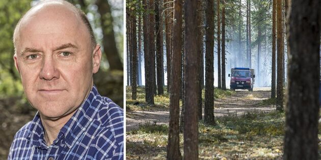 Skogssverige håller andan när brandrisken ökar