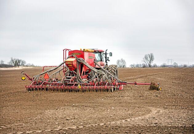 Från toppnoteringen 2018 då Kravodlad råg betalades 92 procent mer än konventionellt odlad har betalningen i år sjunkit till 20 procent mer för kravodlad råg. Arkivbild.