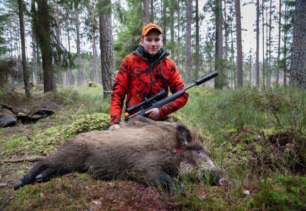 Skytt. Hunden drev vildsvinet förbi Albin Gustavssons pass. Han fällde det med ett välplacerat skott.