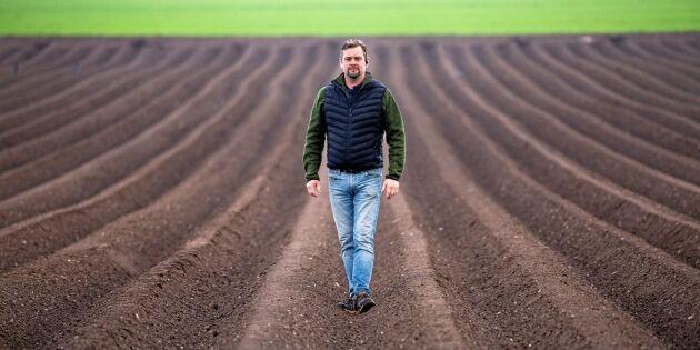 Testar potatis för att öka lönsamheten