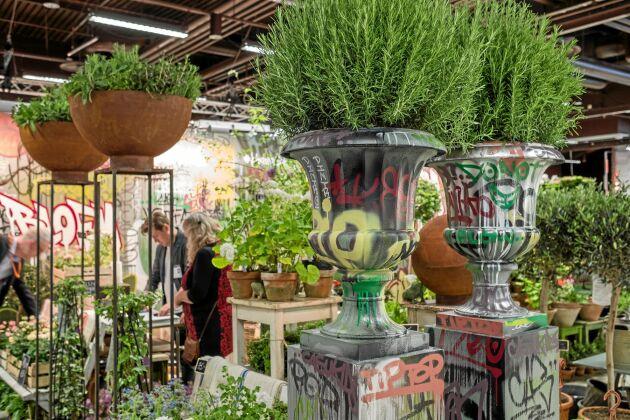 Njut av all den härliga grönskan som trädgårdsmässan bjuder på.