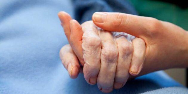 Deras sommarjobb: Att uppträda för de sjuka och äldre
