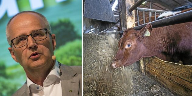 LRF vädjar till regeringen om sju åtgärder mot torkan