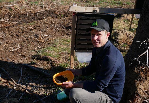 Mårten Gustavsson hoppas och tror att den första svärmningen av granbarkborrar har nått sin kulmen nu.