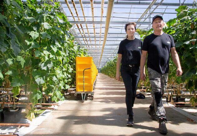 Linda Lövberg och Jeppe Robertsson satsar på en grön framtid. Nästa år ska ett nytt klimatsmart växthus stå klart.
