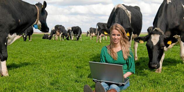 Länktips: Hitta foder till djuren via datorn