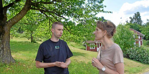 Jordbruksverket möter lantbrukare om torkan