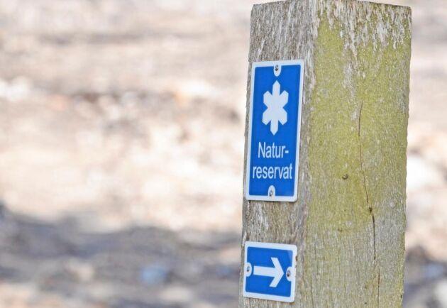 Dammarna ligger alldeles i kanten av ett naturreservat men våtmarksanläggningen har inga negativa effekter på naturreservatet.