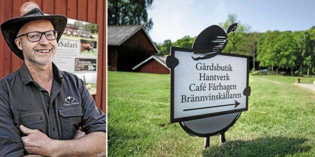 Fårfarmens succékombo: Mathantverk och turism
