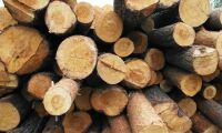 Fusion för norska skogsägarföreningar