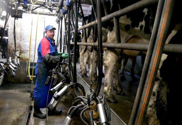 Gerry O'Reilly tog över gården 2016 och har investerat mycket i gården. Han hoppas att det finns en framtid inom mjölkproduktion även efter Brexit.