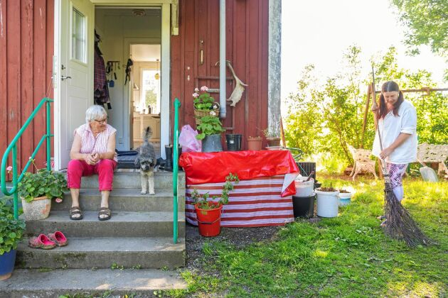 Ann-Charlotte räfsar med hemgjord kvast, av björkkvistar medan Ingrid tar en paus på trappan med hunden Anita.