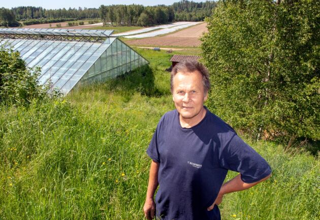 I växthus och på friland odlar Olle Göransson och Torfolk ett 80-tal olika grönsakssorter.