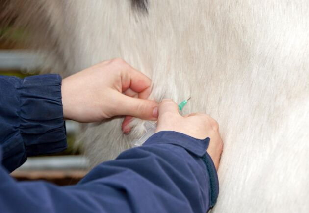 Vaccinationer på häst i Sverige får enligt regelverket göras av veterinär eller legitimerad djursjukskötare under överinseende av veterinär.