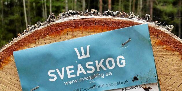 """""""Sveaskog avverkar inte skyddsvärd skog"""""""