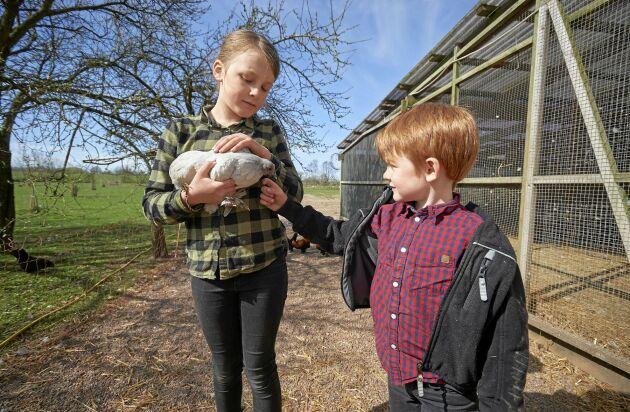 Barnen Stella och Carl gosar med en Torparehöna.