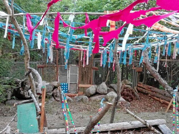 Tygremsor för att skrämma bort rovfåglar har fungerat ypperligt hittills.