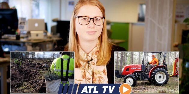ATL TV: Rekordtidig plantering i söder