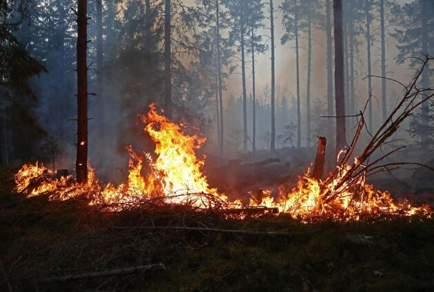 Skogsbrand i Godegård, Motala kommun.