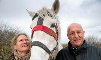 Smarta grimman håller koll på hästen