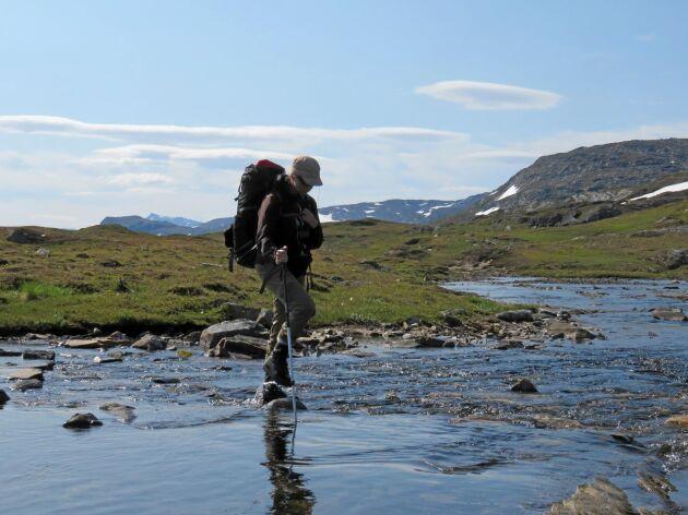 Det förekommer inga svårare vad längs Padjelantaleden. Ofta finns spång eller bro.