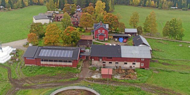 Mjölkgårdar kan spara pengar på energilagring