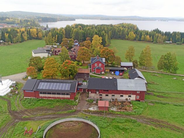 Mjölkgården Vallsänge utanför Bollnäs har provat om batterilager kan vara något för lantbruk.