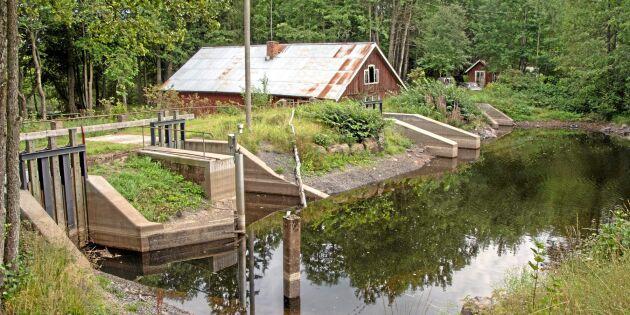 Slipper söka tillstånd för 300-årig damm