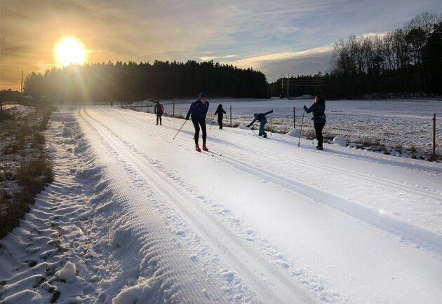 Ett tre kilometer långt skidspår av konstsnö utanför Stockholm är också en del av Peter Collins verksamheter.